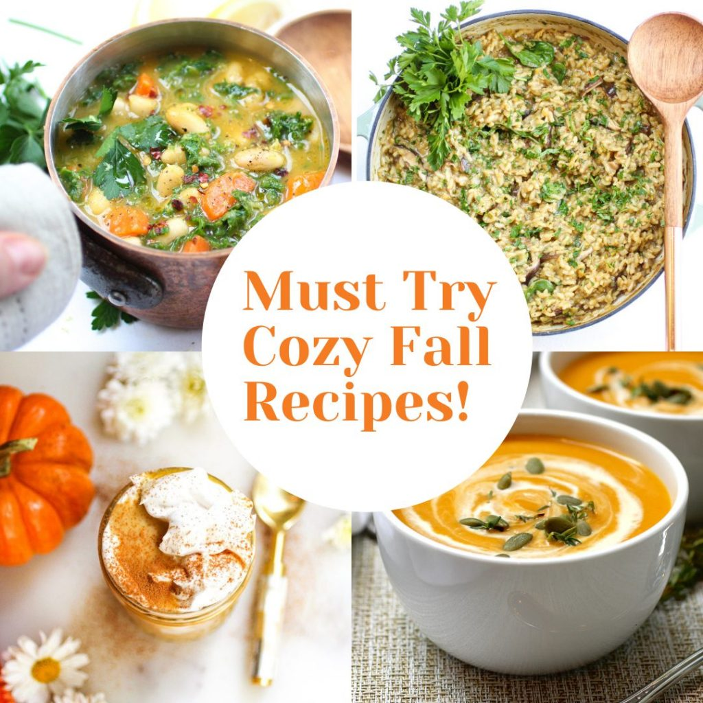 Must try cozy Fall recipes